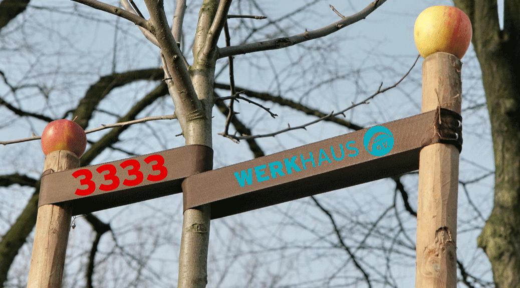 3333Baeume